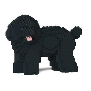 Caniche Nain Noir